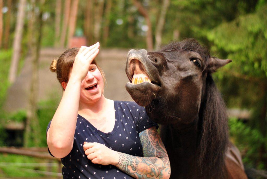 Nicht nur gesunde Hufe sind wichtig, Spaß muss sein!